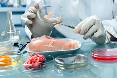 INOCUIDAD ALIMENTARIA: Inspección Higiénica Sanitaria